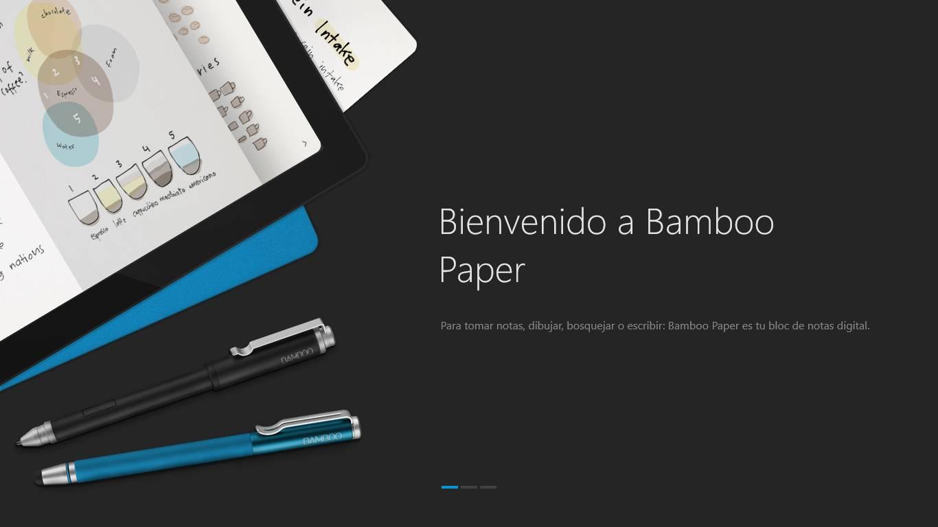 Bamboo Paper Windows 8