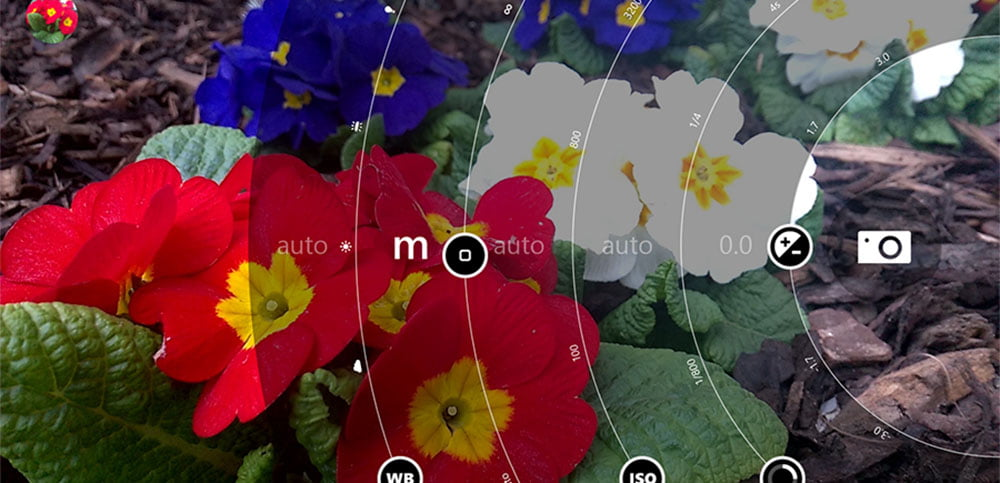 Portada Foto Macro Lumia
