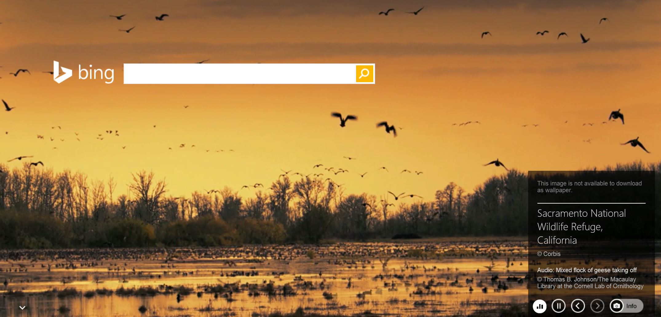 Bing mostrando el Sacramento National Wildlife Refuge de California