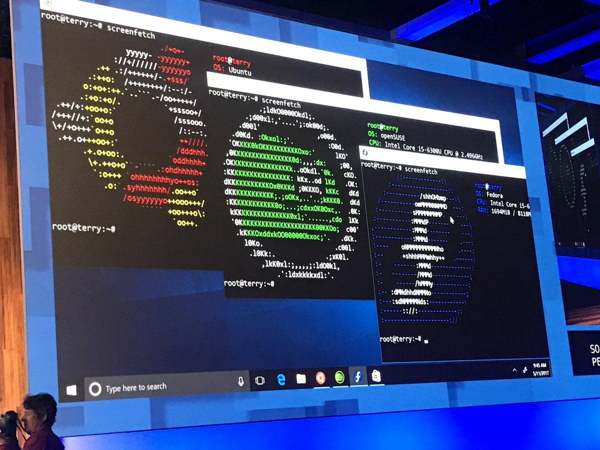 Bash de Ubuntu, SUSE y Fedora