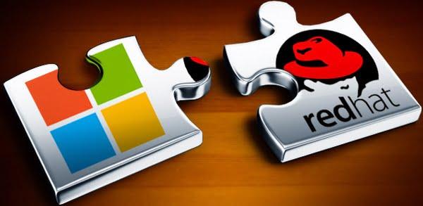 La pieza que le faltaba a Microsoft