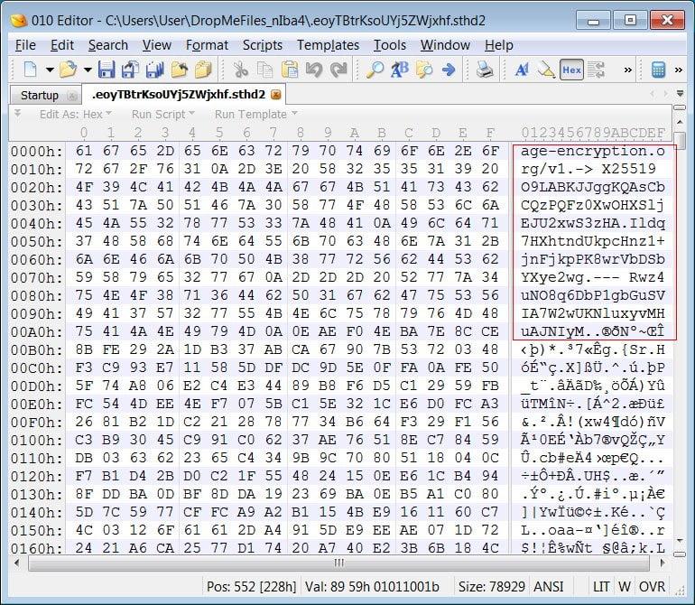 Un archivo encriptado con AgeLocker