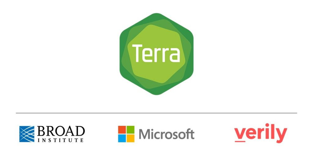 Terra y Microsoft juntos